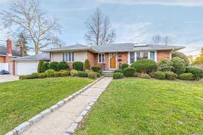 East Meadow Single Family Home For Sale: 796 Bellmore Ave