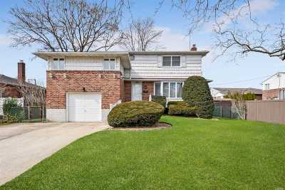Levittown Single Family Home For Sale: 129 Bud Ln