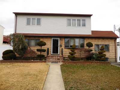 Farmingdale, Hicksville, Levittown, Massapequa, Massapequa Park, N. Massapequa, Plainview, Syosset, Westbury Single Family Home For Sale: 255 N Cedar St