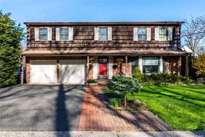 Rockville Centre Single Family Home For Sale: 801 N Village Ave