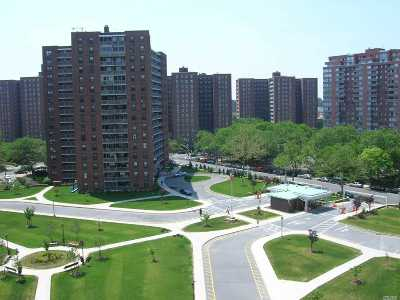 Rego Park Co-op For Sale: 61-45 98th St #6H