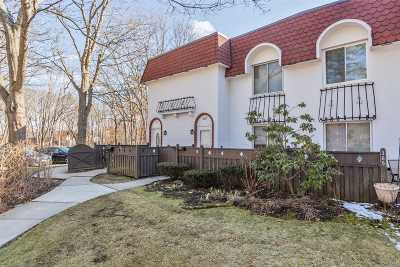 Medford Condo/Townhouse For Sale: 387 Birchwood Rd