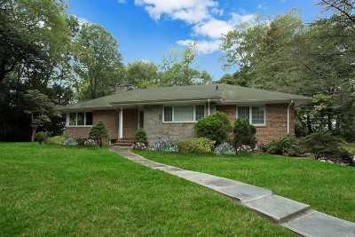 Roslyn Single Family Home For Sale: 38 Mineola Ave