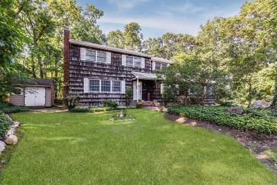 Port Jefferson Single Family Home For Sale: 107 Birch Dr