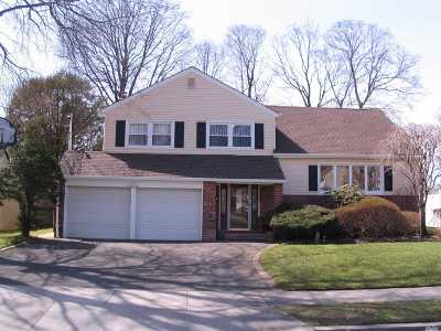 Syosset Single Family Home For Sale: 8 Honey Dr