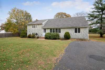 Sayville Single Family Home For Sale: 315 Lakeland Ave