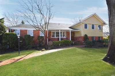 Hewlett Single Family Home For Sale: 3 Payne Cir