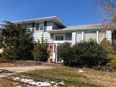 Syosset Single Family Home For Sale: 73 Convent Rd