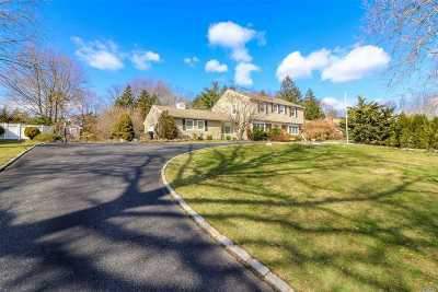 Dix Hills Single Family Home For Sale: 125 Ryder Ave