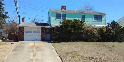 Levittown Single Family Home For Sale: 61 Blackbird Ln