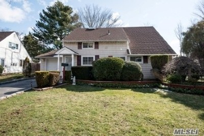 Hicksville Single Family Home For Sale: 41 Fireplace Ln