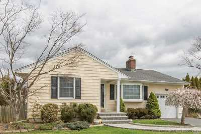 Farmingdale, Hicksville, Levittown, Massapequa, Massapequa Park, N. Massapequa, Plainview, Syosset, Westbury Single Family Home For Sale: 42 Gary Rd