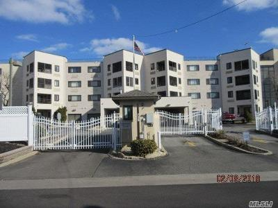 Freeport Condo/Townhouse For Sale: 725 Miller Ave #437