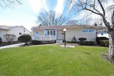 East Meadow Single Family Home For Sale: 384 Cedar Ln