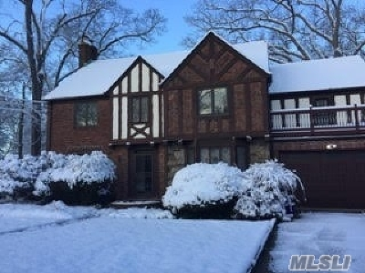 Freeport Single Family Home For Sale: 321 Pennsylvania Ave
