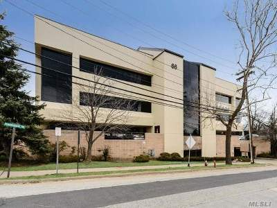 Nassau County Commercial For Sale: 66 Powerhouse Rd