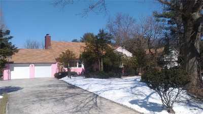 Old Westbury Single Family Home For Sale: 193 Jericho Tpke