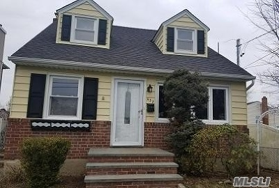 East Meadow Single Family Home For Sale: 437 Green Ave