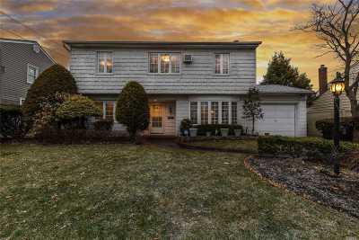 Bellmore Single Family Home For Sale: 2703 Walker St