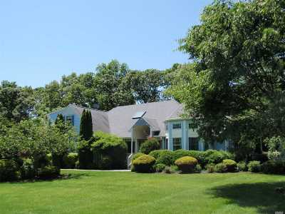 Wading River Single Family Home For Sale: 173 Michaels Ln