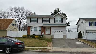 Levittown Single Family Home For Sale: 217 E Red Maple Dr
