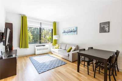 Long Island City Condo/Townhouse For Sale: 21-45 44th Drive #2D