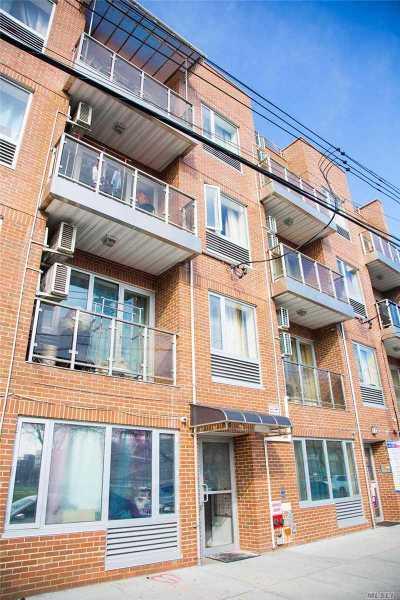 Flushing Multi Family Home For Sale: 32-22 137 St