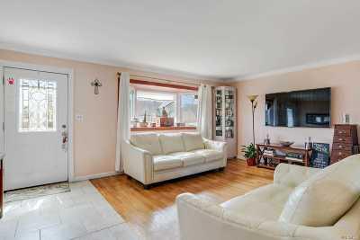 Freeport Single Family Home For Sale: 66 Jefferson St