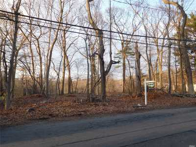 Smithtown Residential Lots & Land For Sale: 33 New Mill Rd