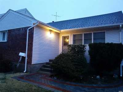 Freeport Single Family Home For Sale: 251 Branch Ave