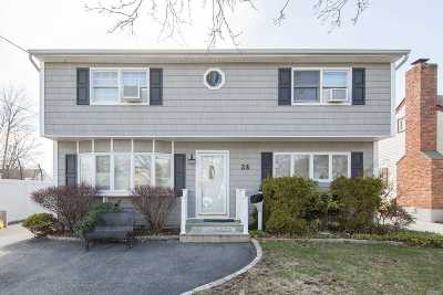 Hicksville Single Family Home For Sale: 28 Crescent St