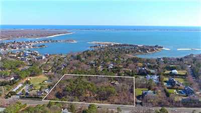 Southampton Residential Lots & Land For Sale: 310 Montauk Hwy