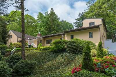 Old Westbury Single Family Home For Sale: 51 Valley Rd