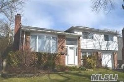 Baldwin Single Family Home For Sale: 677 W Allwyn St