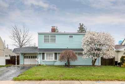 Hicksville Single Family Home For Sale: 19 Straw Ln
