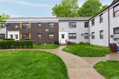 Kew Garden Hills Co-op For Sale: 68-10 138th St #B