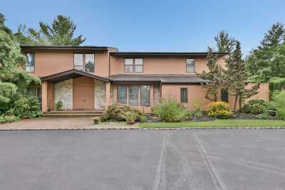 Syosset Single Family Home For Sale: 20 Carriage Ct