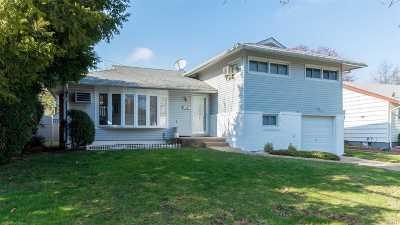 East Meadow Single Family Home For Sale: 1515 Sylvia Ln