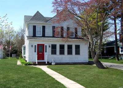 Sayville Single Family Home For Sale: 220 Foster Ave