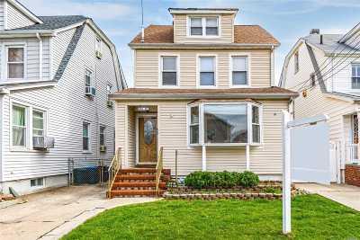Bellerose, Glen Oaks Multi Family Home For Sale: 238-01 88 Avenue