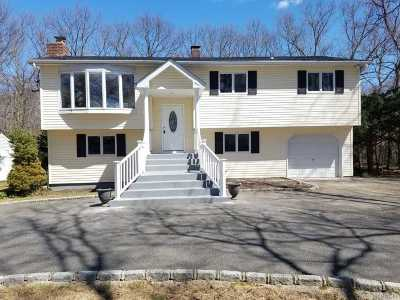 Mt. Sinai Single Family Home For Sale: 87 Chestnut St