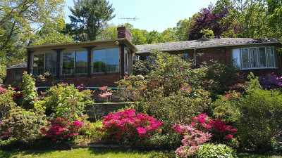 Roslyn Single Family Home For Sale: 845 Bryant Ave
