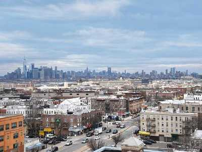 Brooklyn Condo/Townhouse For Sale: 420 64th St #Pha
