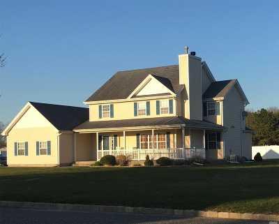 Middle Island Single Family Home For Sale: 9 Christina Ln