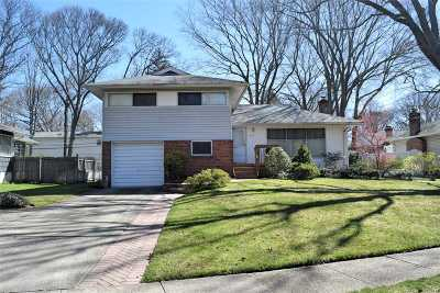 East Meadow Single Family Home For Sale: 809 Richmond Rd