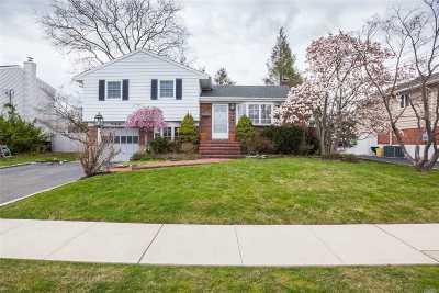 Hicksville Single Family Home For Sale: 46 Kingston Ave