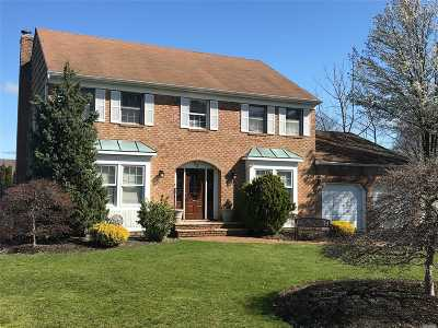 Commack Single Family Home For Sale: 29 Long Meadow Rd