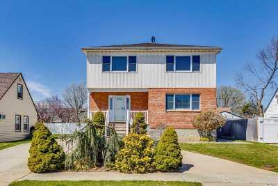 N. Bellmore Single Family Home For Sale: 1428 Harding St