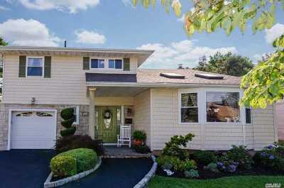N. Bellmore Single Family Home For Sale: 1136 Albert Rd