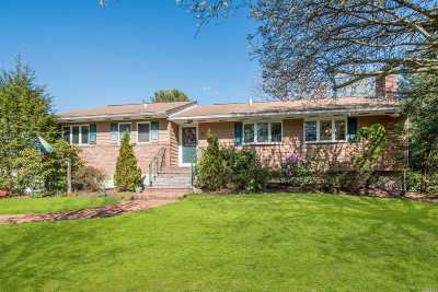 Smithtown Single Family Home For Sale: 2 Village Way